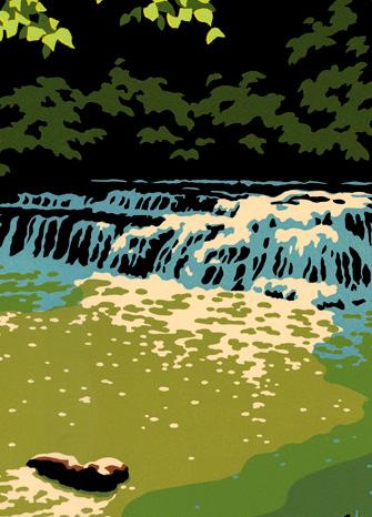 Sunlit Stream