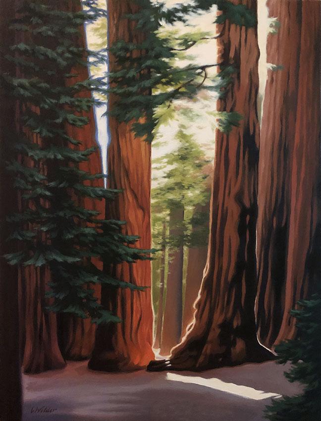 Sequoias painting